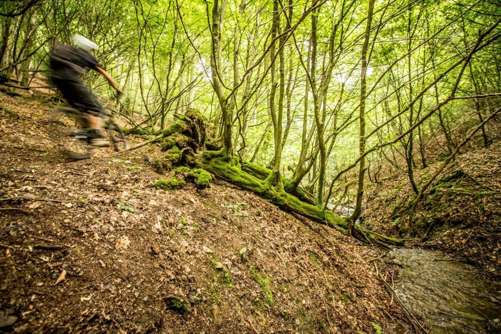 Nideggen trail updown magazine