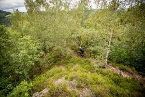 nideggen trail route