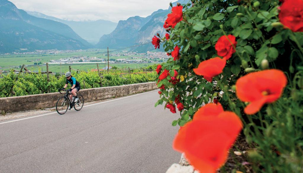 Fietsen in Tramin Zuid-Tirol