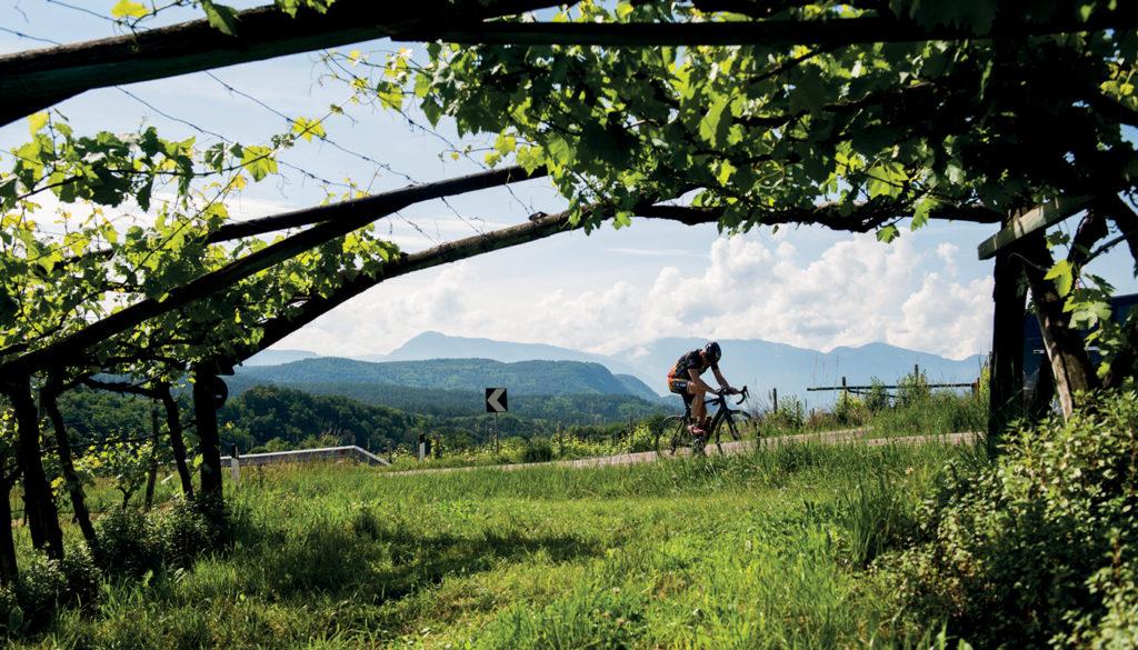 Fietsen in Tramin Zuid-Tirol 2