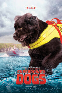 Superpower Dogs