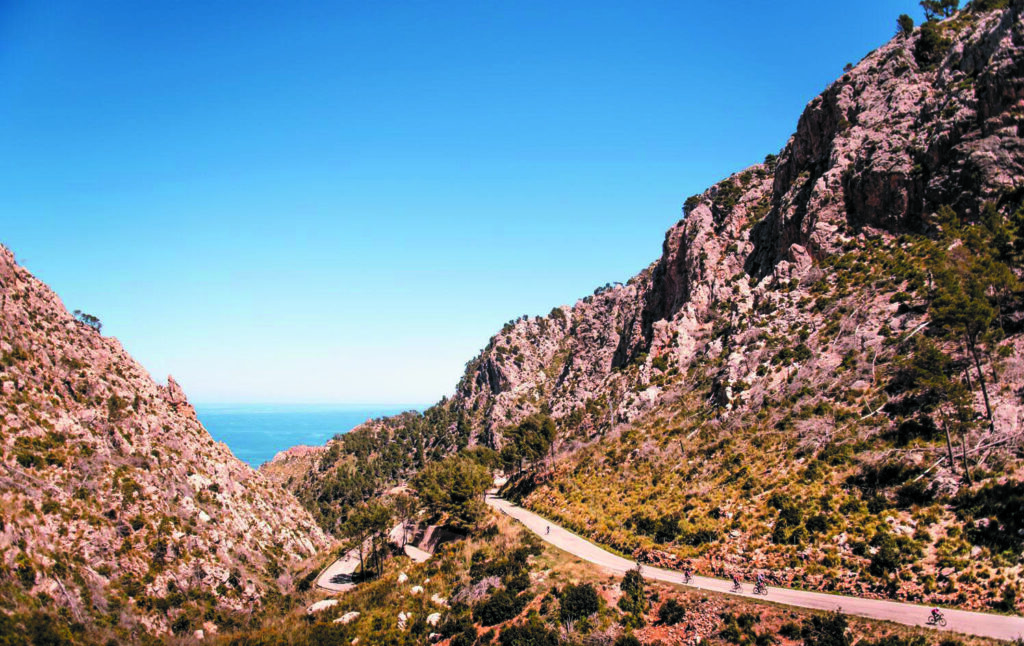 De Mallorca 312