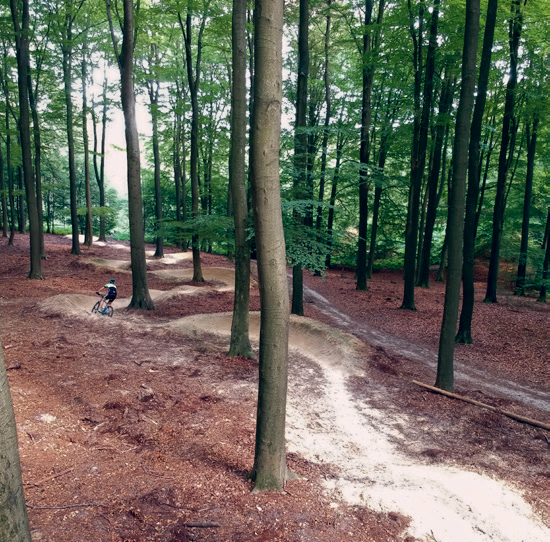 5-mountainbike regios in nederland
