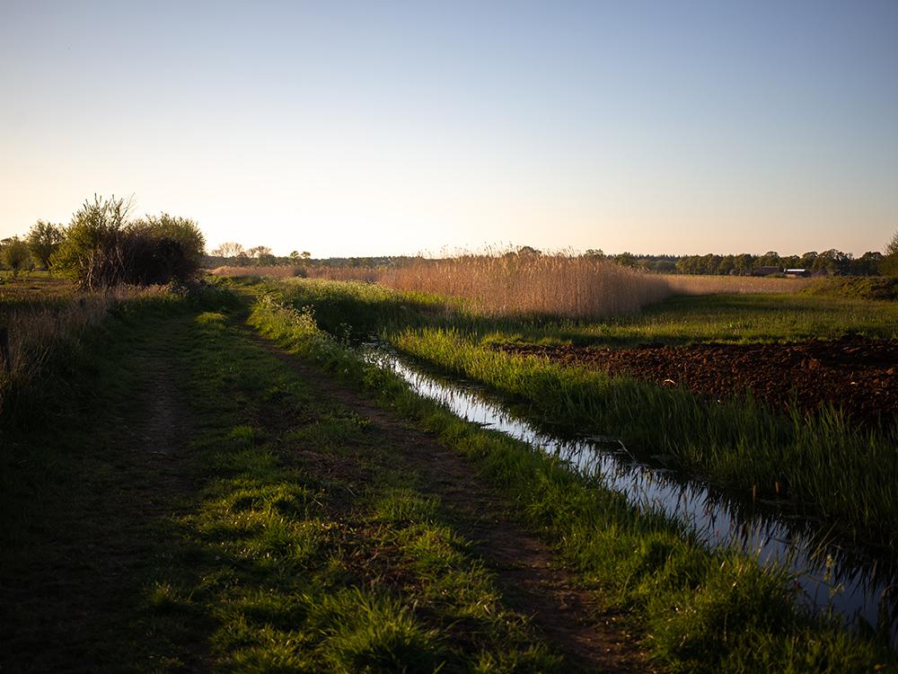 Fietsroute: Gravellen op de Veluwe