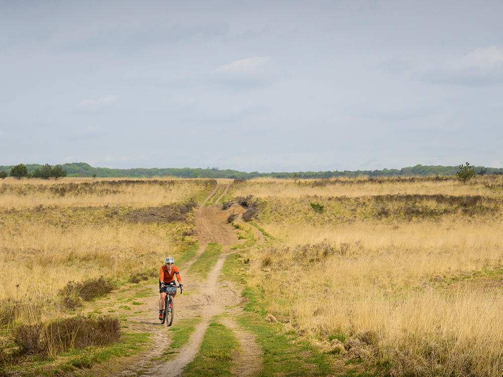 Gravelroute: vanuit Arnhem over de Veluwe