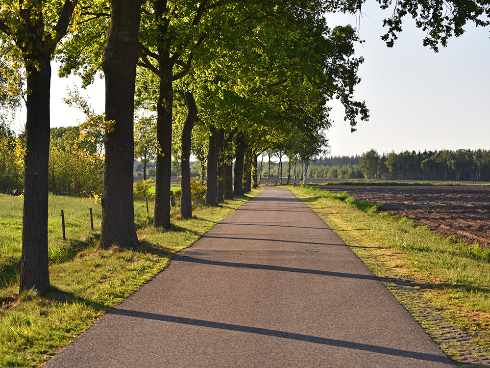 Fietsroute vanuit Breda