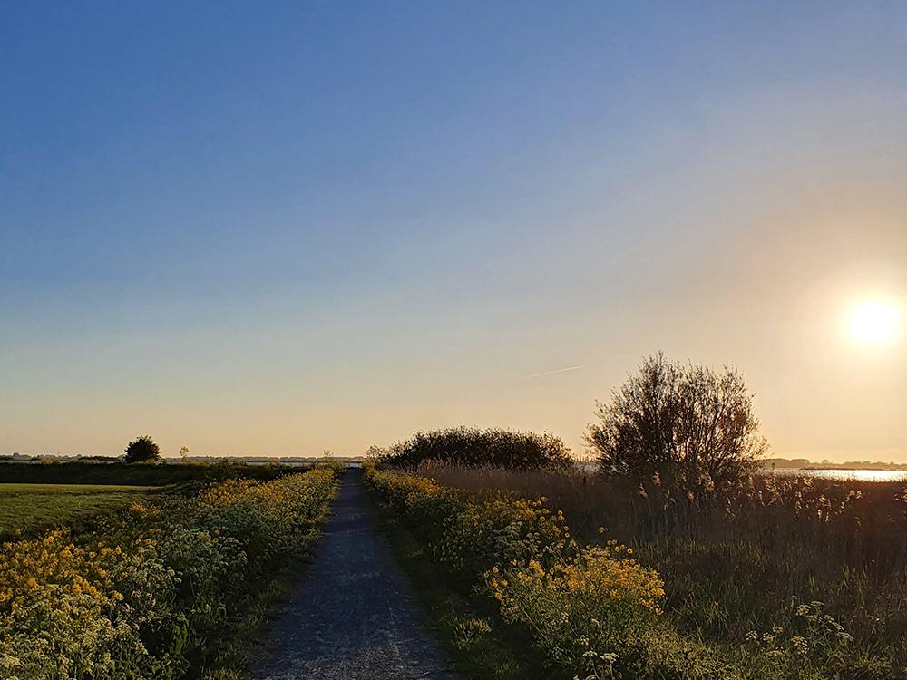 Frieslandse fietsroute