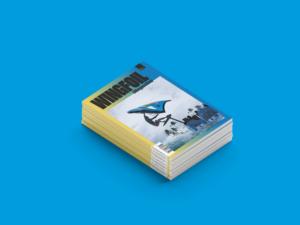 Wingfoil magazine 1 2021 SOUL media