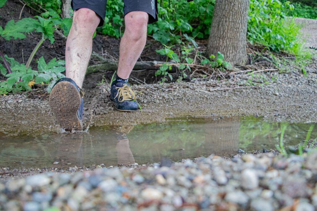 Behind the trails Spaarnwoude 2.0